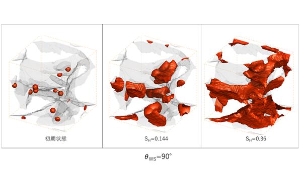 CO2ハイドレート<br>成長シミュレーション